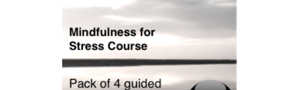 MP3 Downloads for Mindfulness for Stress Course