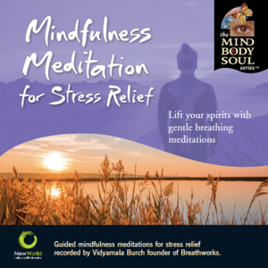 Mindfulness Meditation for Stress Relief