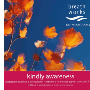 Kindly Awareness CD