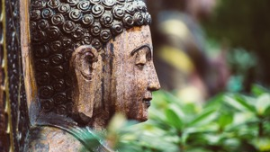 The Buddhist Root of Mindfulness - The Satipatthana Sutta