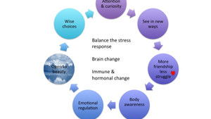 How can mindfulness change the lives of people with chronic pain?